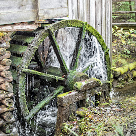 Water Wheel by Richard Michael Lingo - Buildings & Architecture Architectural Detail ( detail, moss, buildings, water wheel, smoky mountains )