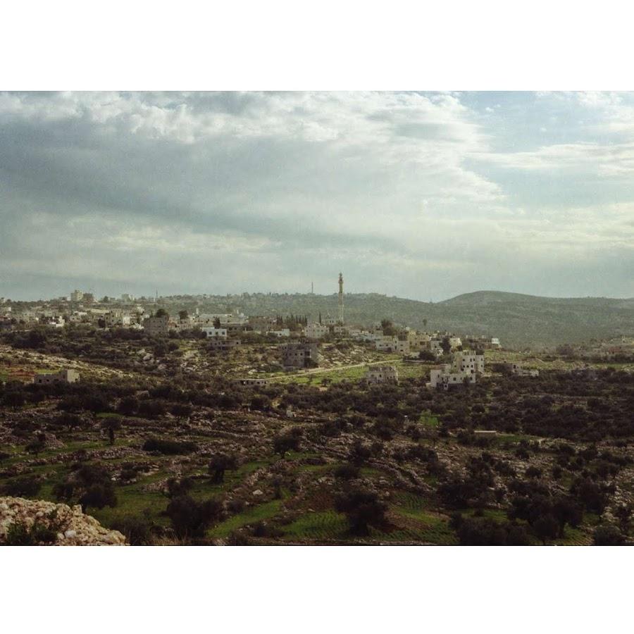 Michele Cirillo, Palestine 8