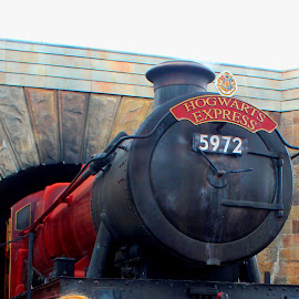 Hogwarts Express by Christie Henderson - Novices Only Objects & Still Life ( harrypotter, hogwarts express, harry potter )