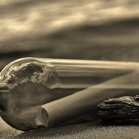 message in a bottle by Simon Lambert - Artistic Objects Other Objects ( water, message, bottle )