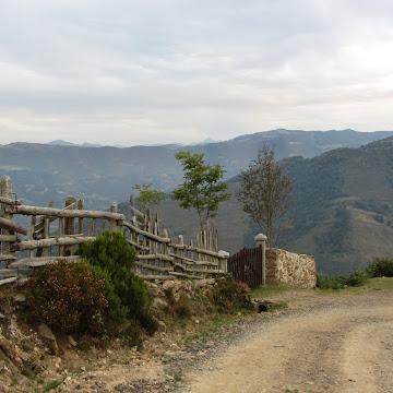 Carrera, La