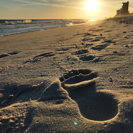 Footprint at Sunset by Barry Lehman - Landscapes Beaches ( sunset, footprint, alabama, beach, landscape )