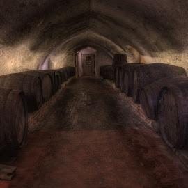 The cellar by Krasimir Lazarov - Artistic Objects Other Objects ( wine, building, cellar, leeds castle, castle, cask )