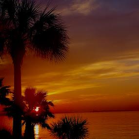 by Hugh McLaren - Landscapes Sunsets & Sunrises (  )
