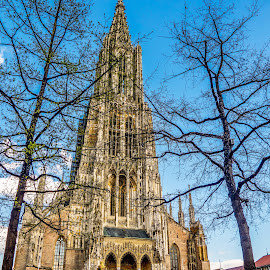Ulmer cathedral in Germany  by Linda Brueckmann - Buildings & Architecture Public & Historical