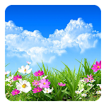 Flower Spring Live Wallpaper Icon