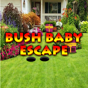 Bush Baby Escape