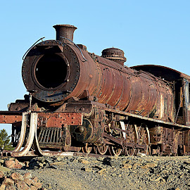 Old Steam Train by Danette de Klerk - Transportation Trains ( karoo, history, railway, klipplaat, train, trains )