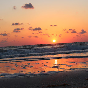 Reflections by William Rhodes - Landscapes Sunsets & Sunrises ( reflection, waves, sunset, beautiful, beach )