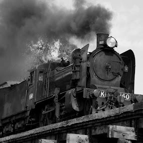 K 160 by William Greenfield - Transportation Trains ( monochrome, 160, white, train, k, black, steam,  )