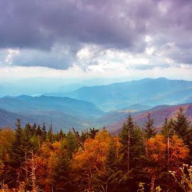 Smokies by Jennifer  Loper  - Landscapes Mountains & Hills ( mountains, north carolina, leaves, dark skies, autumn, clouds, trees )