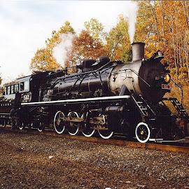 Susquehanna 142 by Guy Harnett - Transportation Trains ( steam engine, susquehanna, autumn, foliage, locomotive, railroad, fall, rail, transportation, trains )
