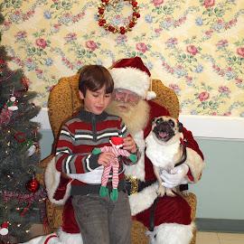 Showing Santa an Elf by Kristine Nicholas - Novices Only Street & Candid ( doll, pup, santa claus, christmas, people, pug, kid, holiday, child, toy, tree, santa, puppy, dog, boy, man )