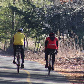 Cycling  by Richard Crosier - Sports & Fitness Cycling ( nature, bikes, trail, friendship, landscapes,  )