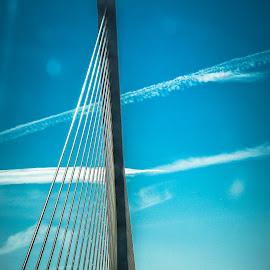 by Lisa Frisby - Buildings & Architecture Architectural Detail ( suspension bridge, suspension, bridge )