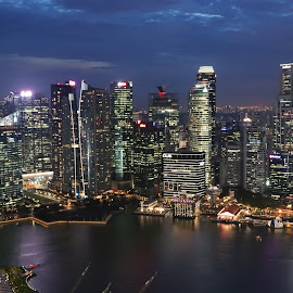 Singapore by Night by Barbara Pobjoy - City,  Street & Park  Skylines