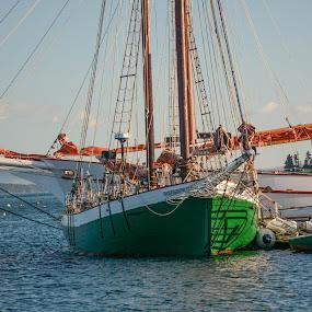 Preparing To Go Out by Robert Coffey - Transportation Boats ( marine, mast, harbor, maine, sailing, ship, boats, ocean, sail, dock, schooner )