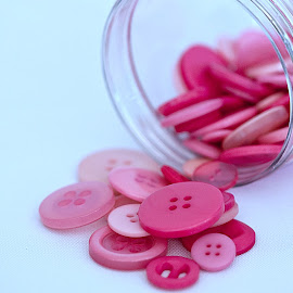Looking for the Perfect Pink Button by Sherry Hallemeier - Artistic Objects Still Life ( artistic objects, pink, buttons, accessories, sewing notions, sewing, white background, artistic, jar, clothing )