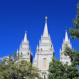 Temple Spires by Tony Huffaker - Buildings & Architecture Places of Worship ( building, utah, spires, east, salt lake temple )