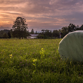 Countryside by Dani Turnšek - Landscapes Prairies, Meadows & Fields ( canon, countryside, home, old, sunset, slovenia, bales, house, landscape )