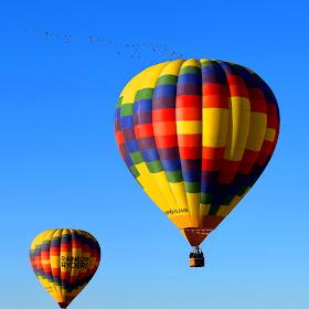 Balloon Geese.jpg