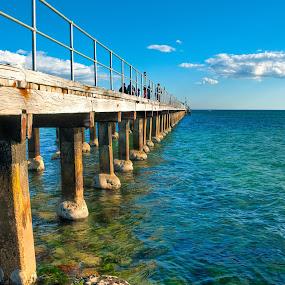 Moordialloc pier by Adam Visscher - Landscapes Beaches ( pier beach victoria australia )