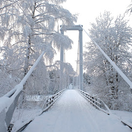 Bridges by Maritha Juhlin - Buildings & Architecture Bridges & Suspended Structures ( winter, cold day, snow, white, bridge, nere the arctic circle, winterday, noth sweden )