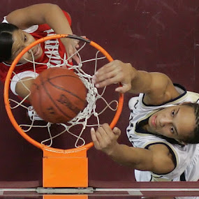 Griner by Eric Smith - Sports & Fitness Basketball