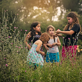 catching ladybugs by Kelley Hurwitz Ahr - Babies & Children Children Candids ( kelley ahr, stock photography, may 2015, stock images, kelley photology )