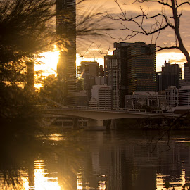 Brisbane on a cold morning by Lynnie Taylor - City,  Street & Park  Skylines