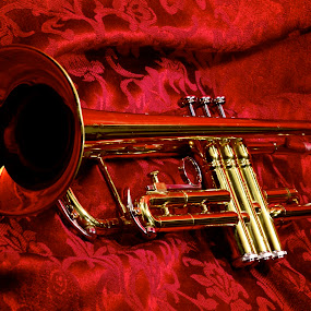 Trumpet 2 by Chris Taylor - Artistic Objects Musical Instruments ( musical instrument, red, jazz, trumpet, brass )