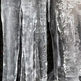 Ice by Christoph Reiter - Nature Up Close Water ( winter, ice )