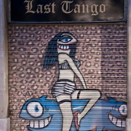 Ghost dancer. by Danijela Danći - City,  Street & Park  Street Scenes ( foot, street art, street, door, entrance, animal, colours )