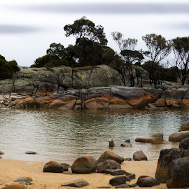 bay if fires by Zac Rushbrook - Landscapes Beaches ( water, trees, landscape, rocks, panorama )