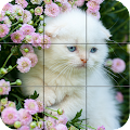 Game Puzzle - kittens APK for Windows Phone