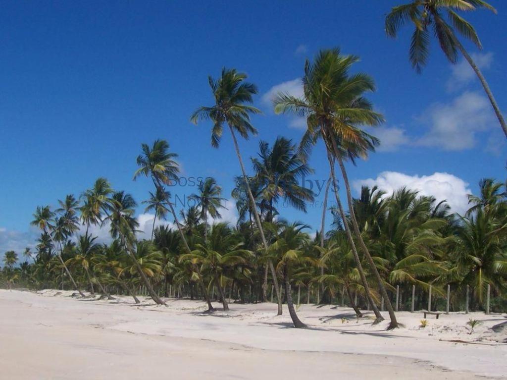 Fazenda,  numa das área litorâneas mais virgens e Belas do Brasil!