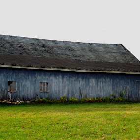 Old Barn  by Jessie Dautrich - Buildings & Architecture Other Exteriors ( old, wooden, barn, wood, blue,  )