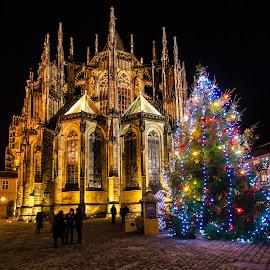 Holy Night by Alexandru Bobica - Public Holidays Christmas ( christmas )