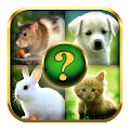 Game Animals Quiz apk for kindle fire
