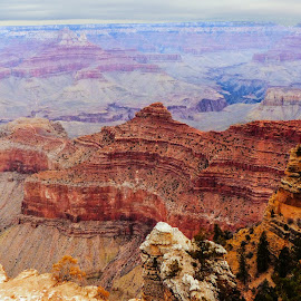 Grand Canyon 2 by Dave Walters - Landscapes Mountains & Hills ( az, national park, colors, moody, travel, senic, grand canyon )