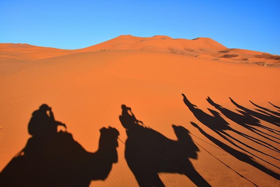 Sahara by Eugenija Seinauskiene - Landscapes Deserts (  )