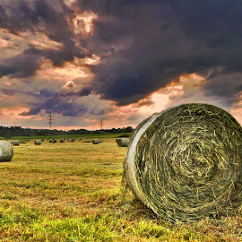 Time ! by Marco Bertamé - Landscapes Prairies, Meadows & Fields ( wheather, clouds, field, grass, green, sunset, dramatic, cloudy, hay bale,  )