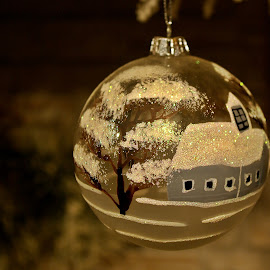 A house in a roud globe by Ciprian Apetrei - Public Holidays Christmas ( decoration, colors, christmas, globe )