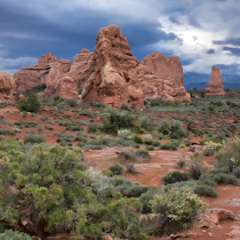 Arches National Park #1 by Phyllis Plotkin - Landscapes Caves & Formations ( national park, arches national park, formations, schrubs, landscape, rocks )