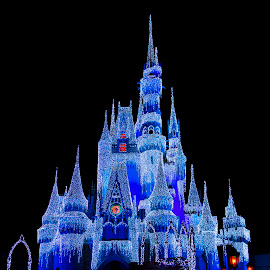 RE-IMG_7018 by Galonii Original - Buildings & Architecture Public & Historical ( disney world, cinderella castle, disney )
