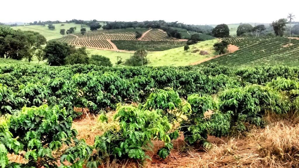Fazenda rural à venda, Zona Rural, Campestre.