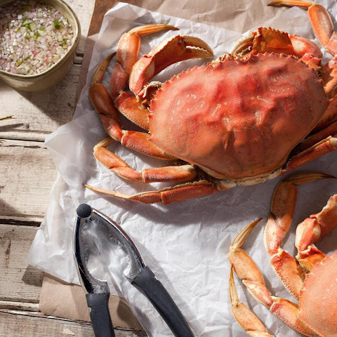 Easy Steamed Dungeness Crab