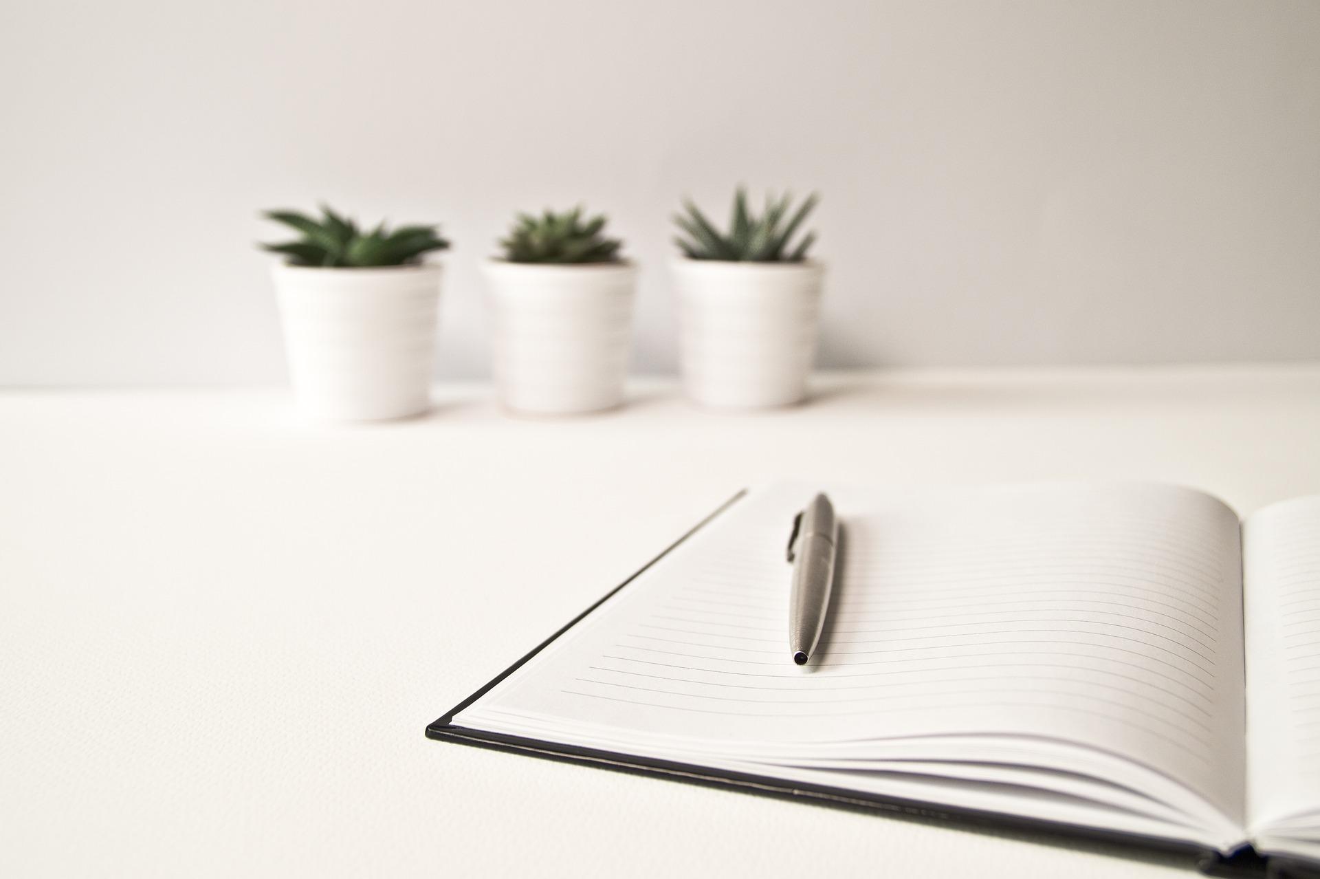 Guia prático para elaboração do Estudo de Impacto Ambiental do seu empreendimento