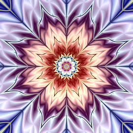 Flower 3 by Cassy 67 - Illustration Abstract & Patterns ( digital art, beauty, flowers, fractal, digital, fractals, blossom, flower )