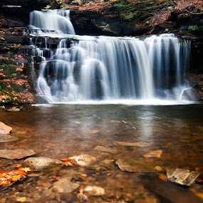 R. B. Rickett Falls by Buddy Eleazer - Landscapes Forests